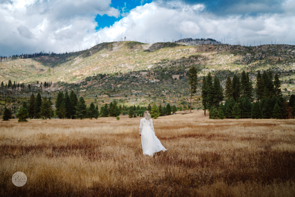 Yosemite-Budget-Wedding-LR-S-14.jpg