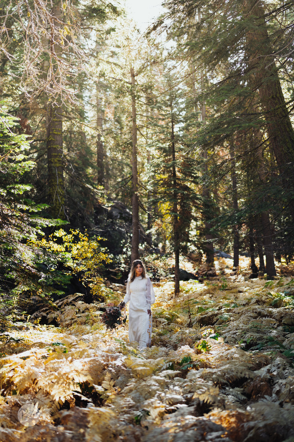 Yosemite-Budget-Wedding-LR-S-64.jpg