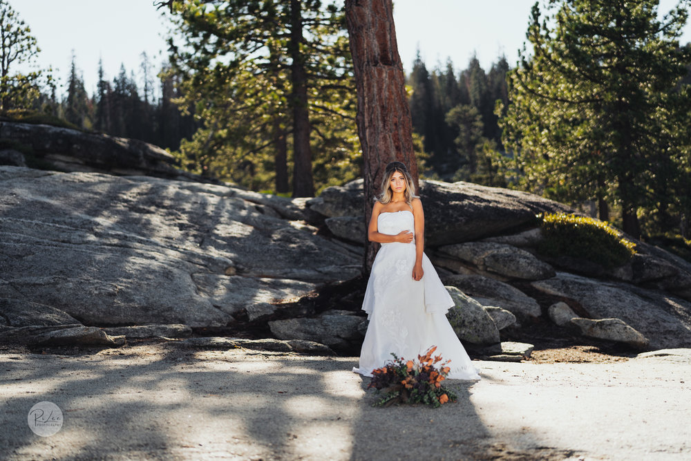 Yosemite-Budget-Wedding-LR-S-88.jpg