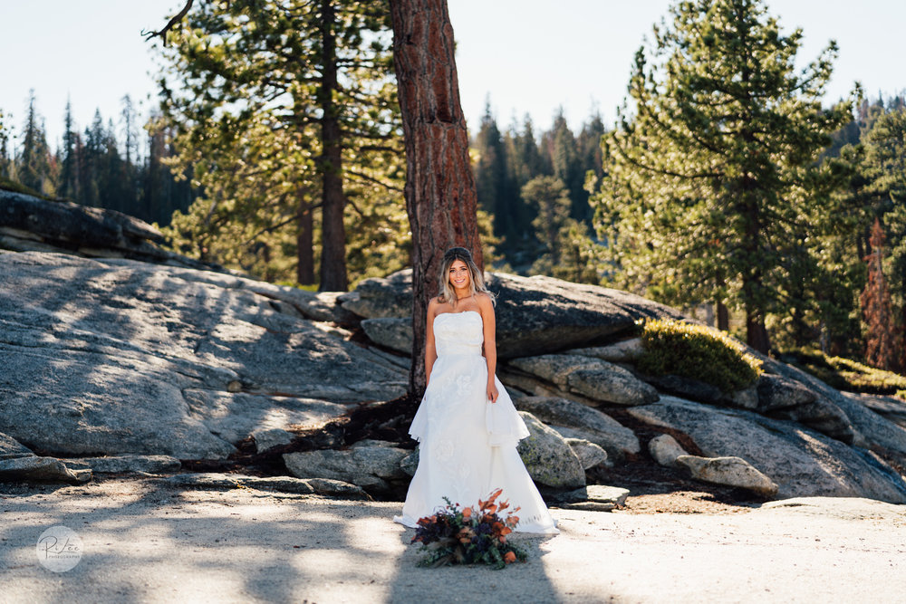 Yosemite-Budget-Wedding-LR-S-86.jpg