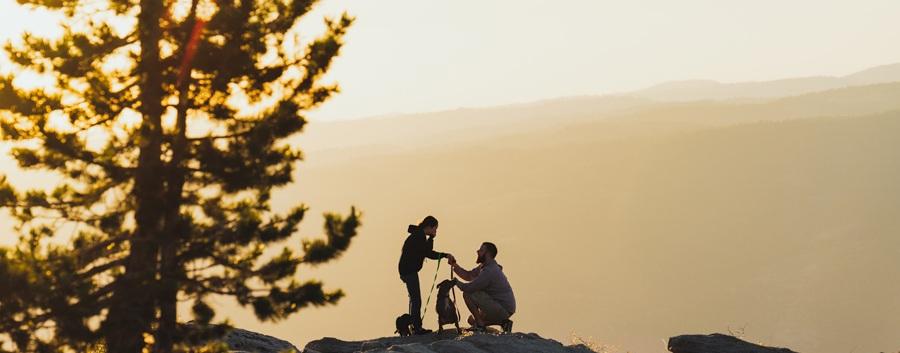 -secret-proposal-photography.jpg