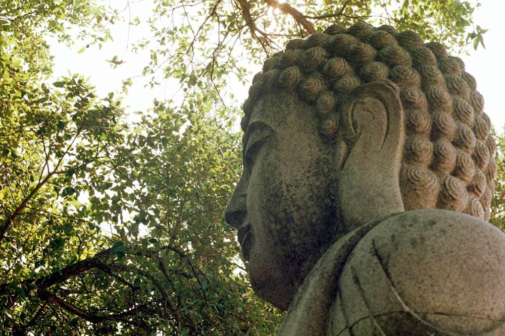 BuddhaEdenPortugalWildWeRoam_0005.jpg