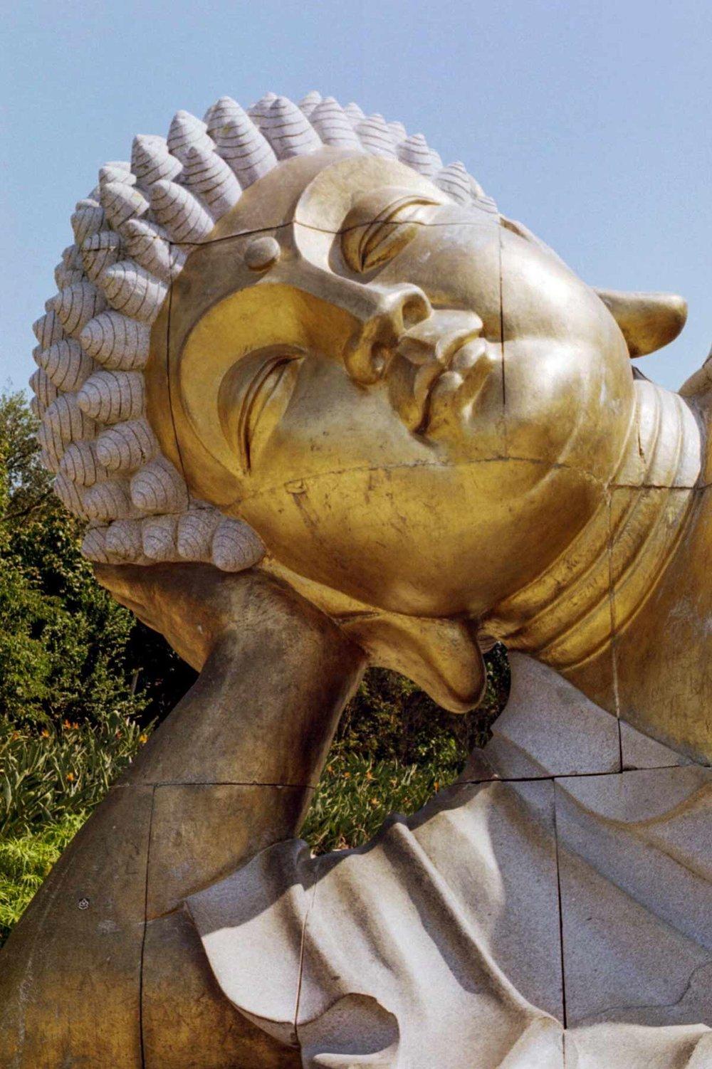 BuddhaEdenPortugalWildWeRoam_0021.jpg