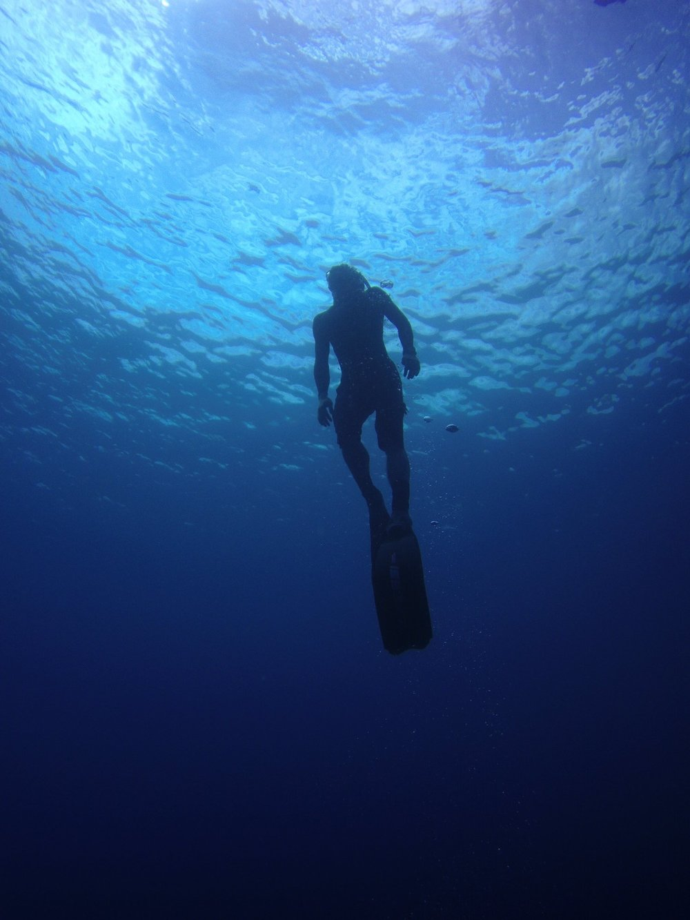 free-diver-blue-water.jpg
