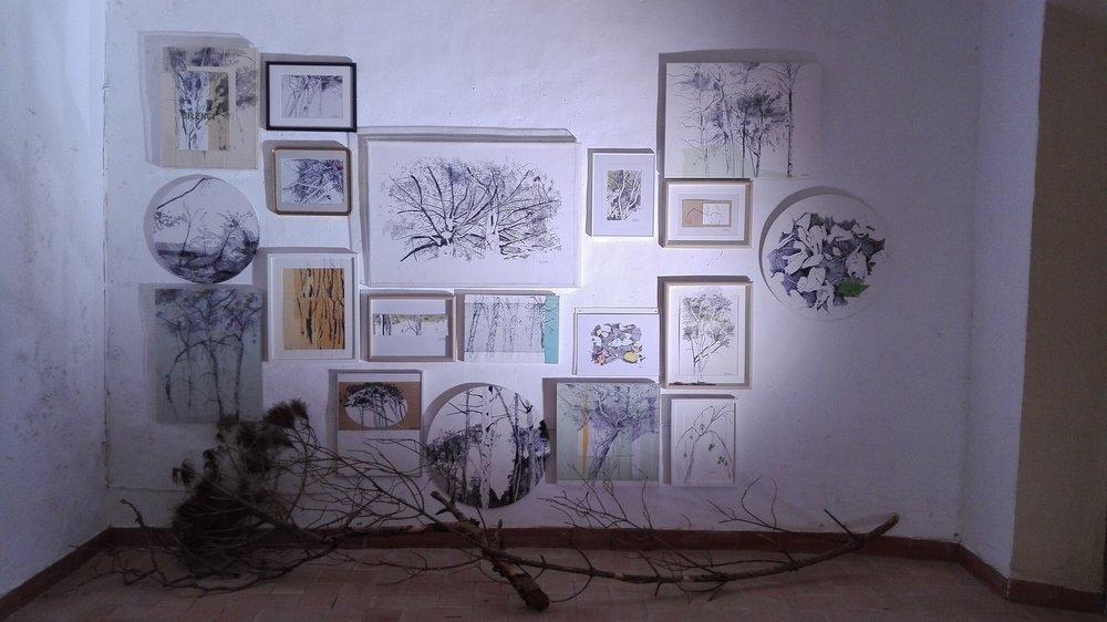 Consciències Naturals, mirant al cel!  Instalación de 18 piezas más ramas de pino blanco  Dibujo s/papel, madera, metacrilato ...  200x300cm