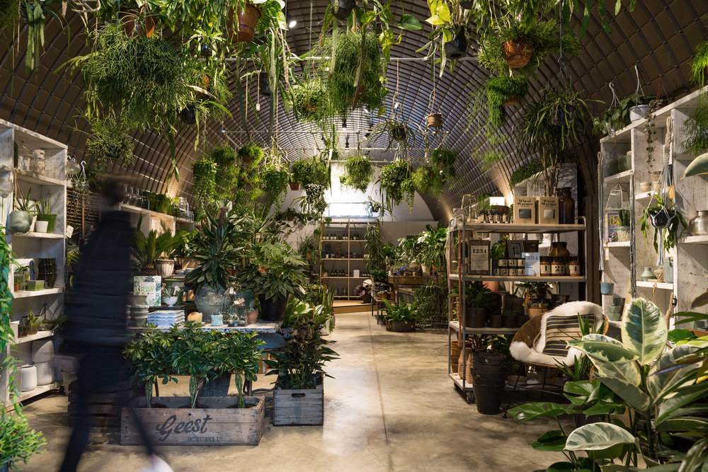 Forest plant store aesop andthen studio