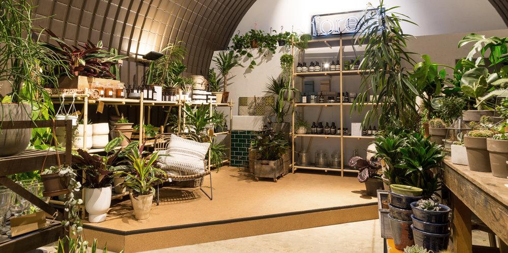 andthenstudio_interiors_forest1.jpg