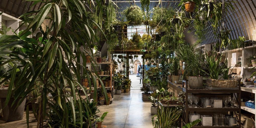 andthenstudio_interiors_forest3.jpg