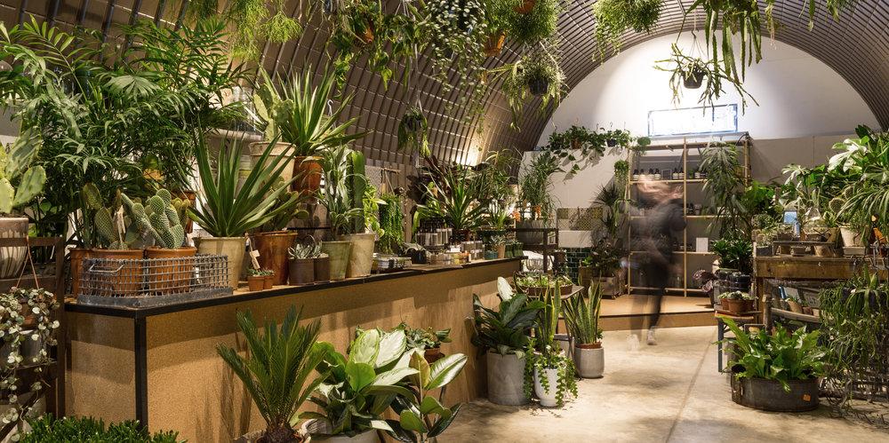 andthenstudio_interiors_forest5.jpg