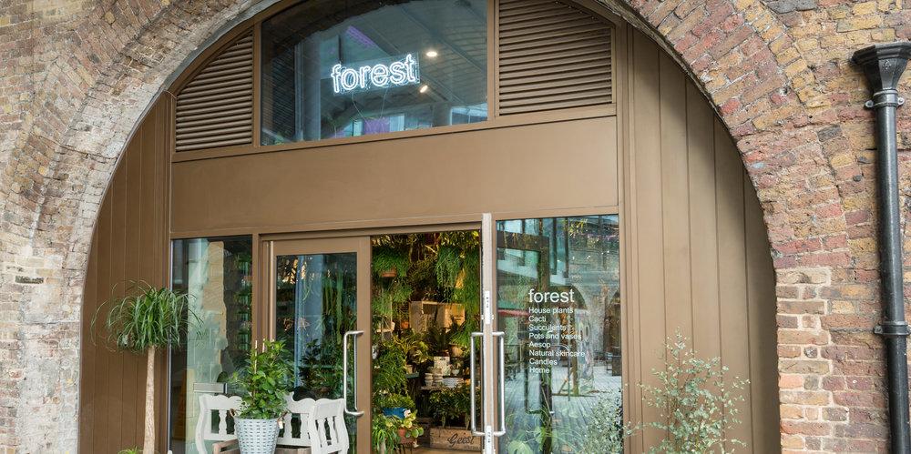 andthenstudio_interiors_forest8.jpg