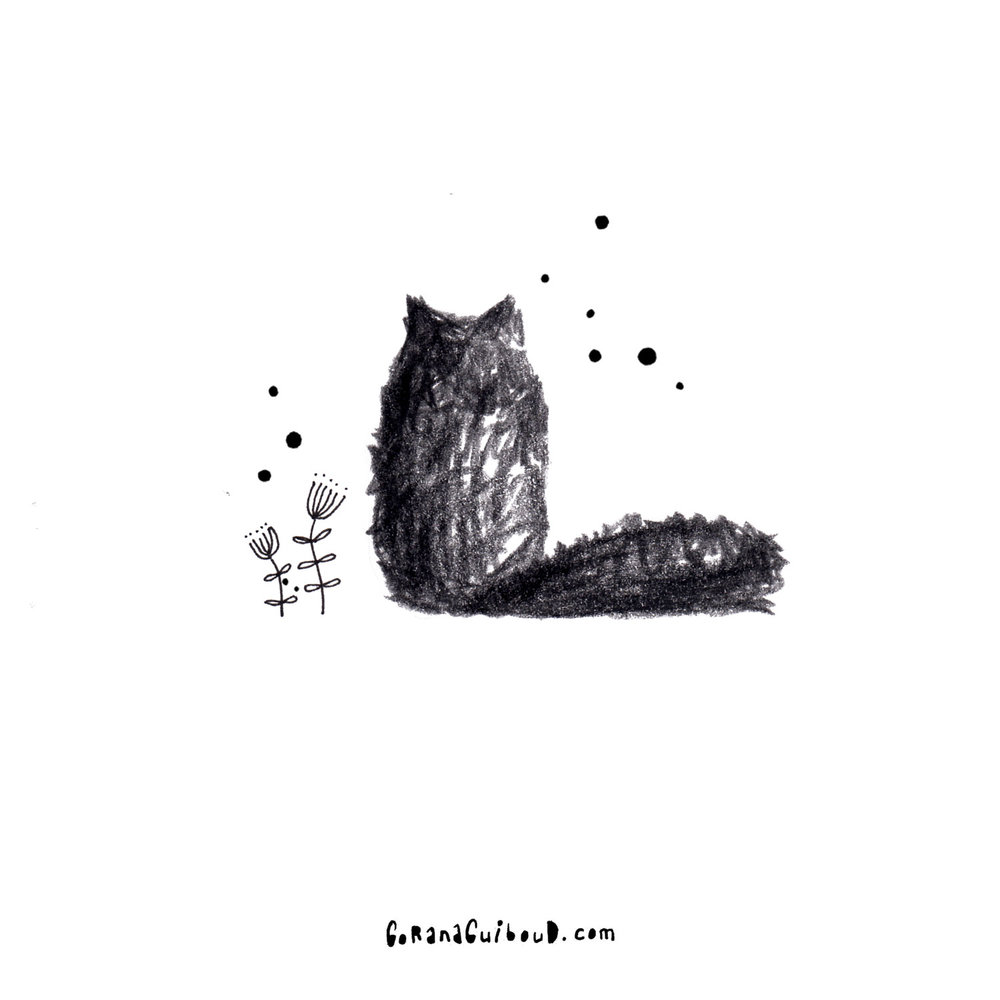 cat-#4.jpg