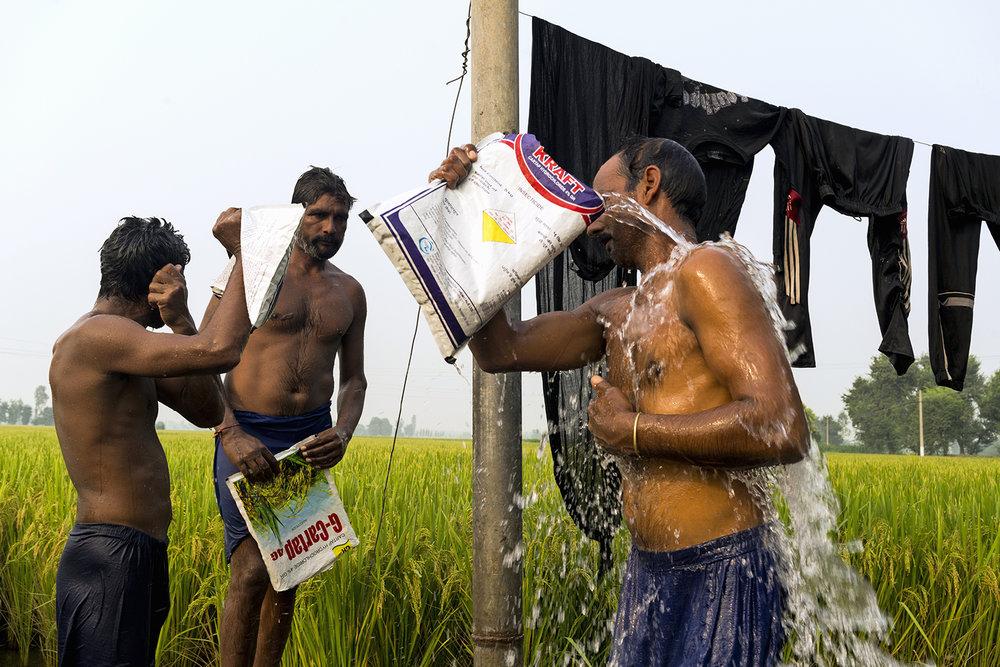 Ohanesian_India__DSC1686+_ok.jpg