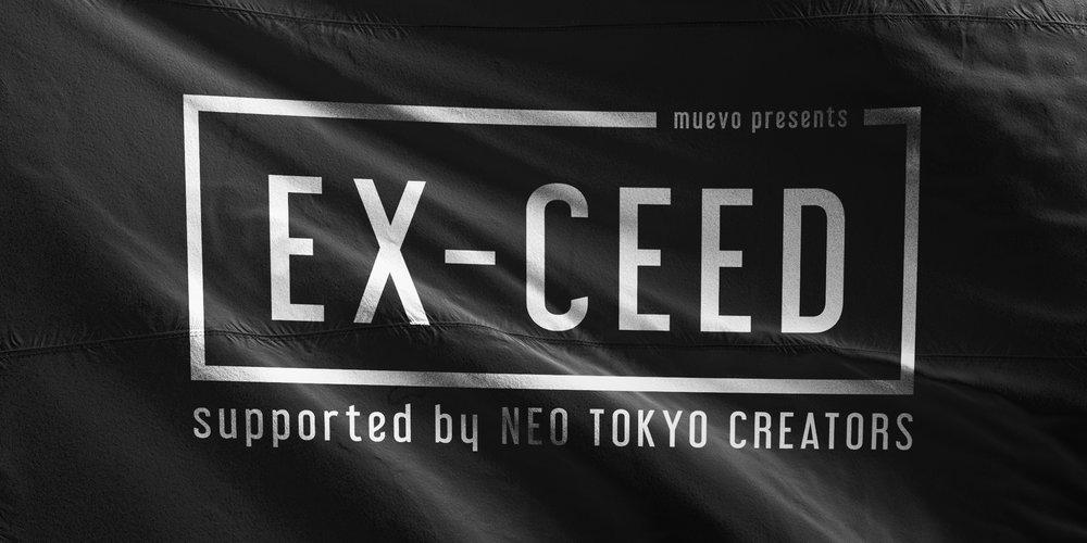 exceed.jpg