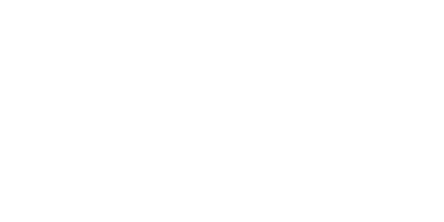 Travel Pioneers