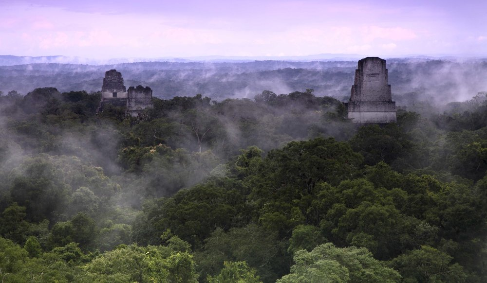 Tikal National Park, a UNESCO heritage site, is the ideal introduction to one of the world's most fascinating civilizations.