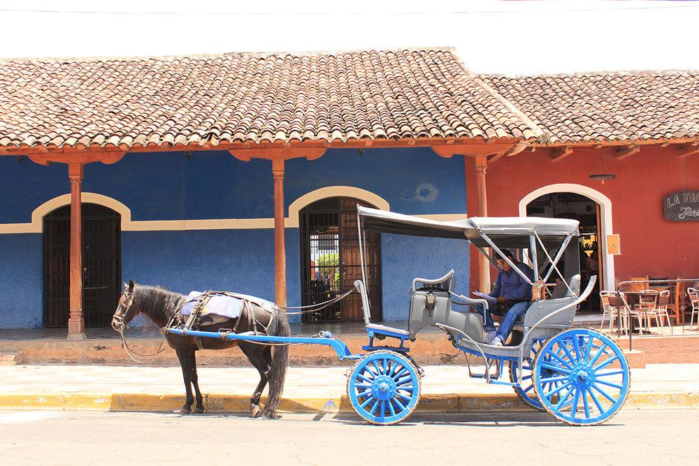 Granada mit der Kutsche entdecken - die etwas andere Sight-Seeing-Tour.