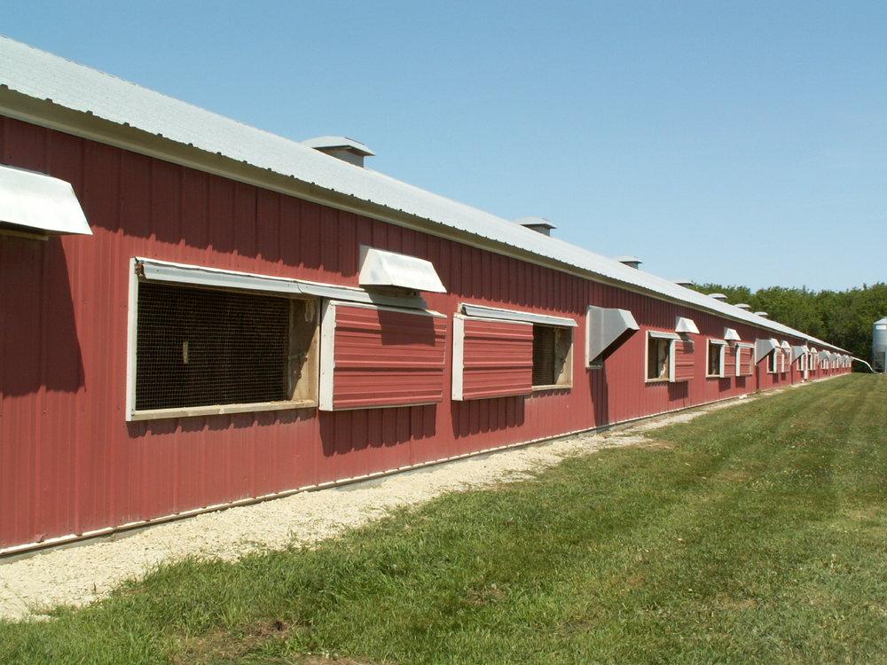 outside turkey barn.jpg