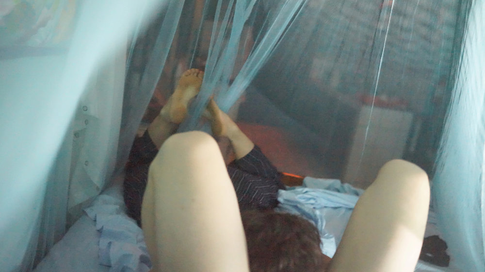 SOTD Wilson-Leventhal (Nicaragua mosquito netting).jpg