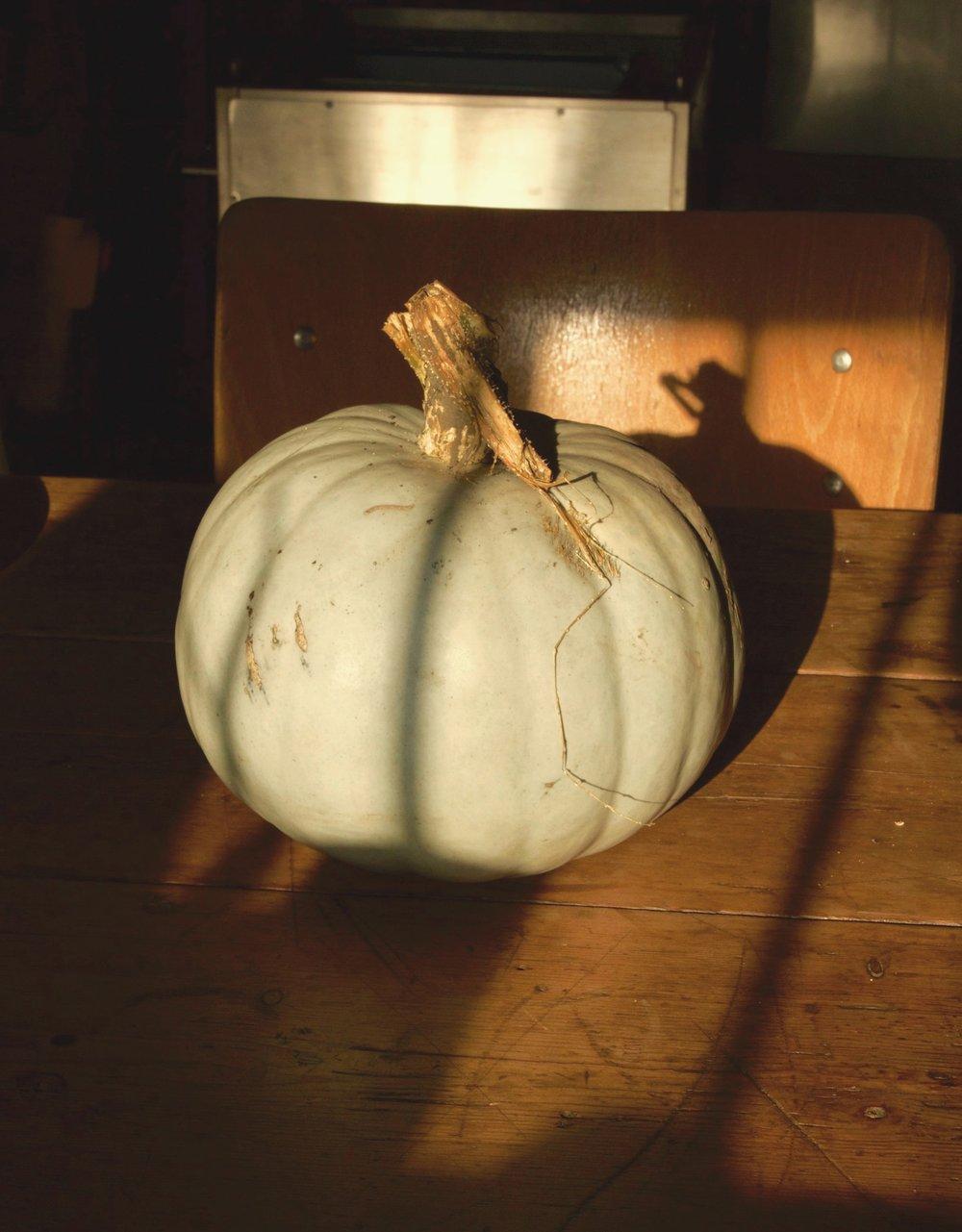 pumpkin+harrison+charcoal+ovens