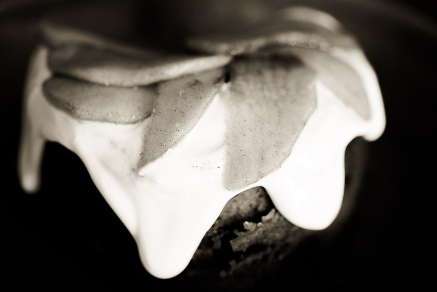 52 week project - cake in black and white