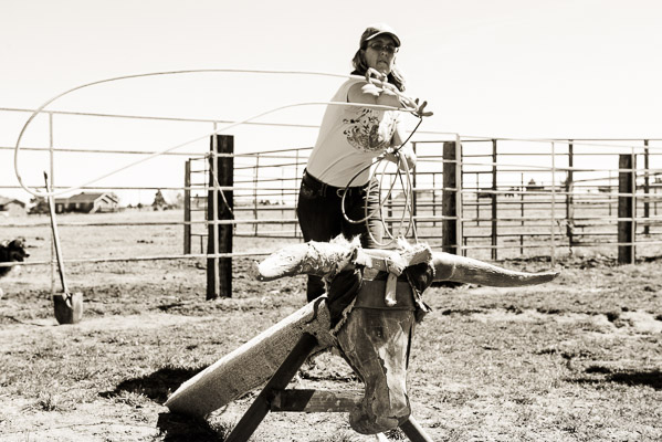Roping a dummy steer