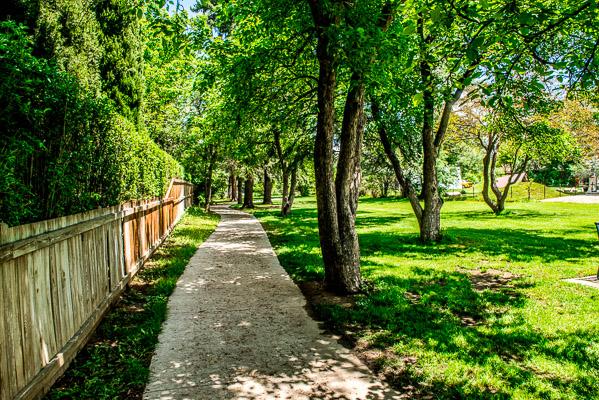 Walking path to Cramner Park