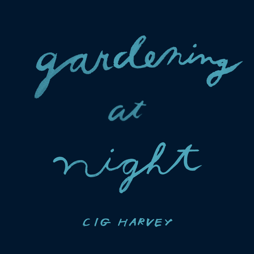 Gardening at Night Book Cover