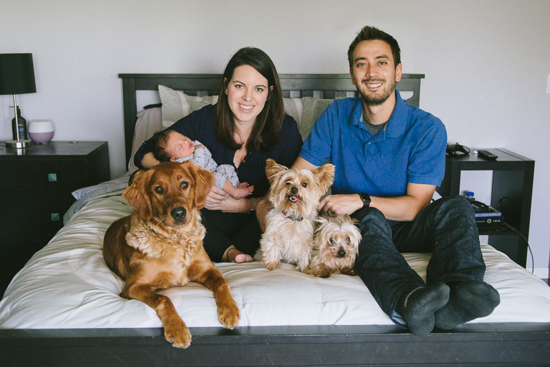 family with newborn and their dogs