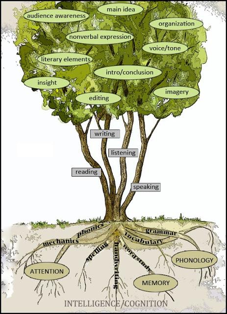 The language tree.jpg
