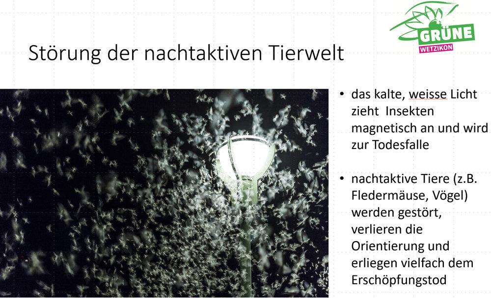 2018-10_Lichtverschmutzung-2.jpg