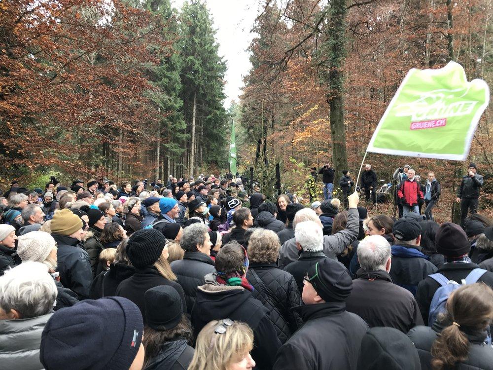 Hunderte demonstrieren im Tägernauerholz gegen die Schlacken-Deponie und gegen die Abholzung.