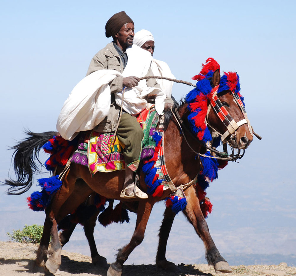 man riding a horse in the simien mountains.jpg