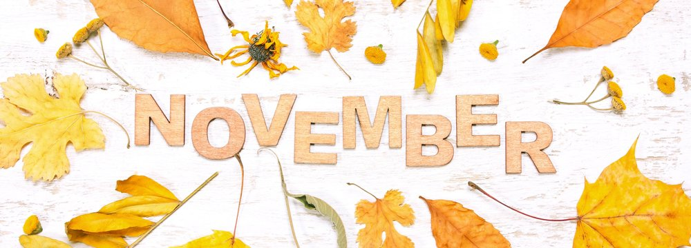 AdobeStock_125257637-Novemeber.jpeg