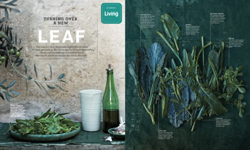 food+blogger+leaf+recipes+edible+living.png
