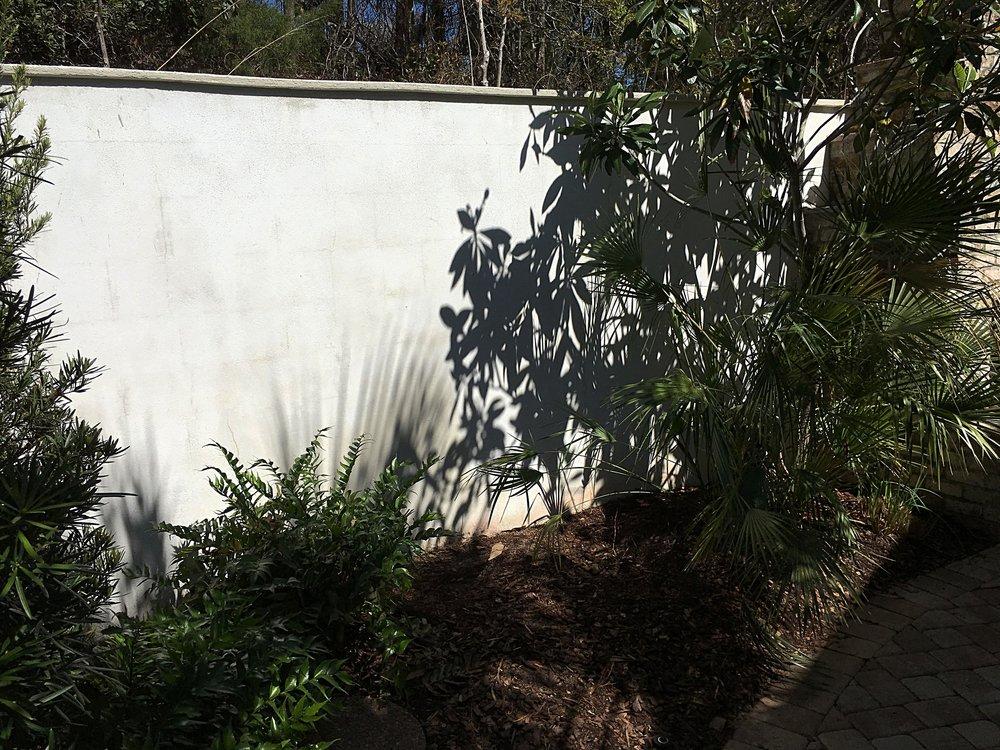 Garden Wall Before.jpg