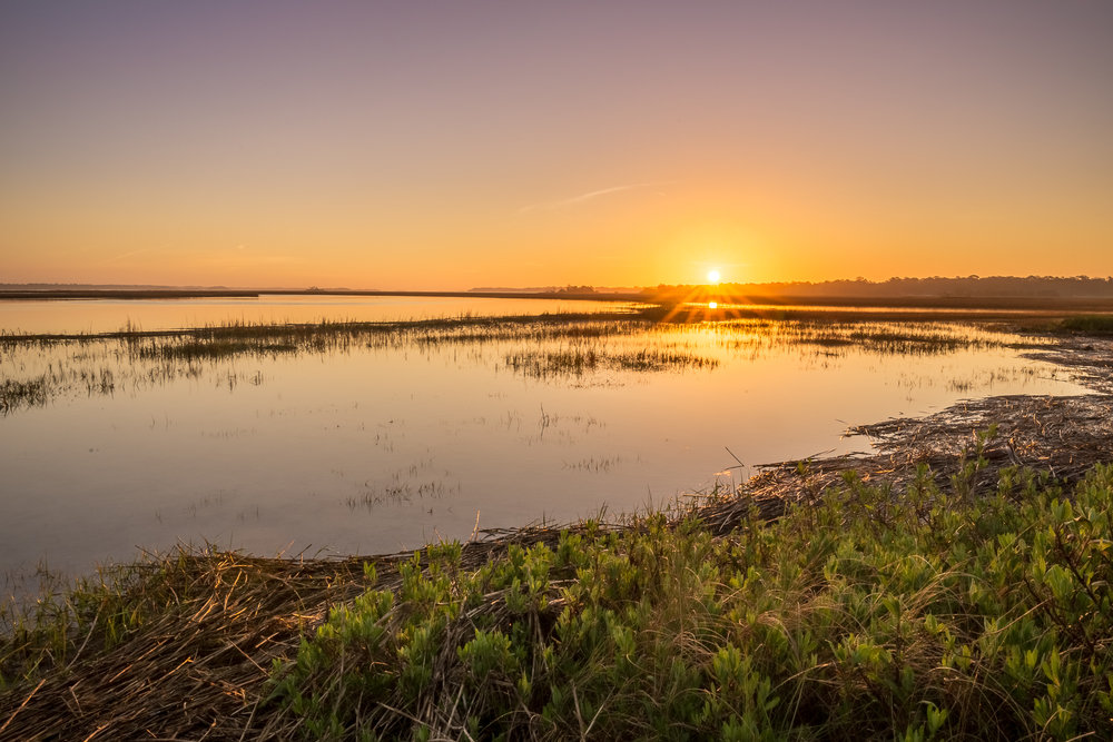 landscape-of-marsh-at-sunrise