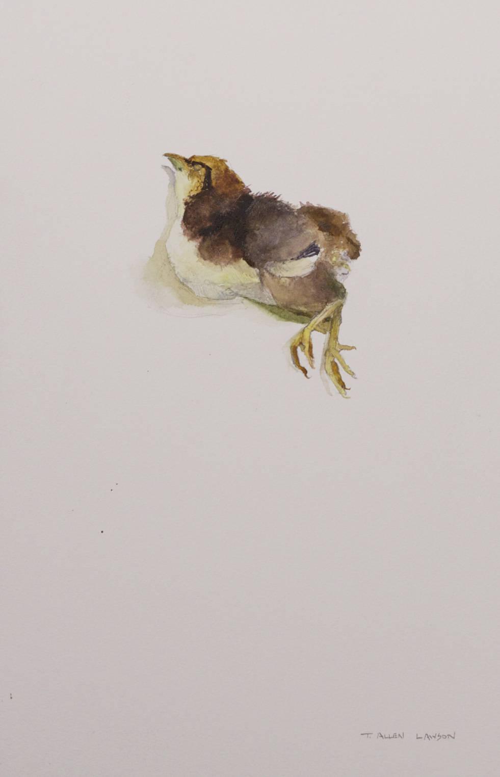 Unsuccessful, watercolor & graphite on watercolor board, 13.75 x 9 in.