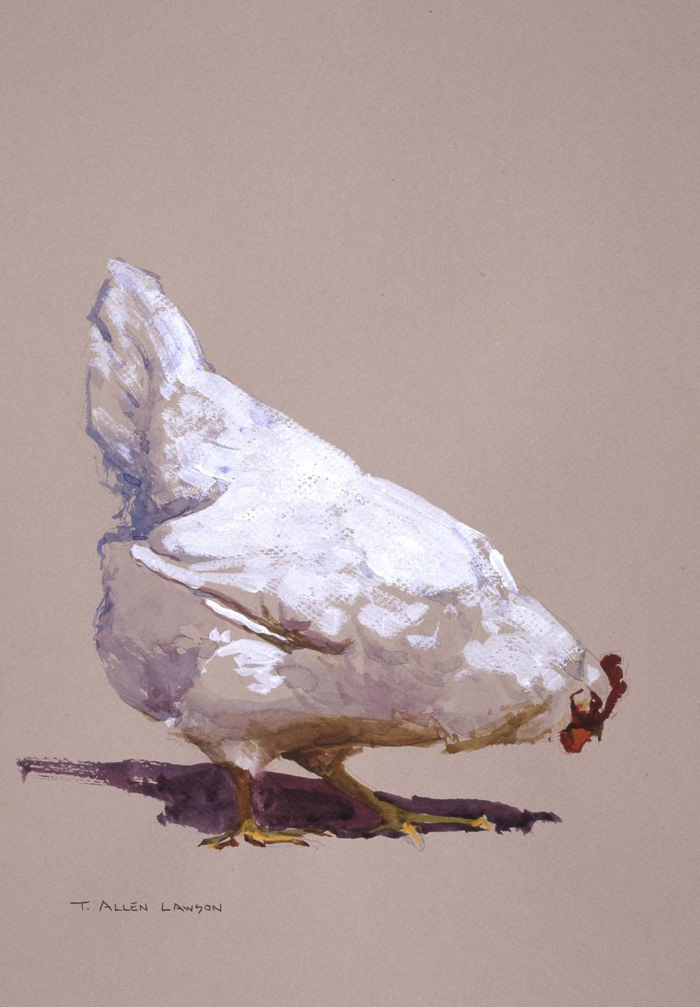 Chicken IV, mixed mediums on toned paper, 12 x 9 in.