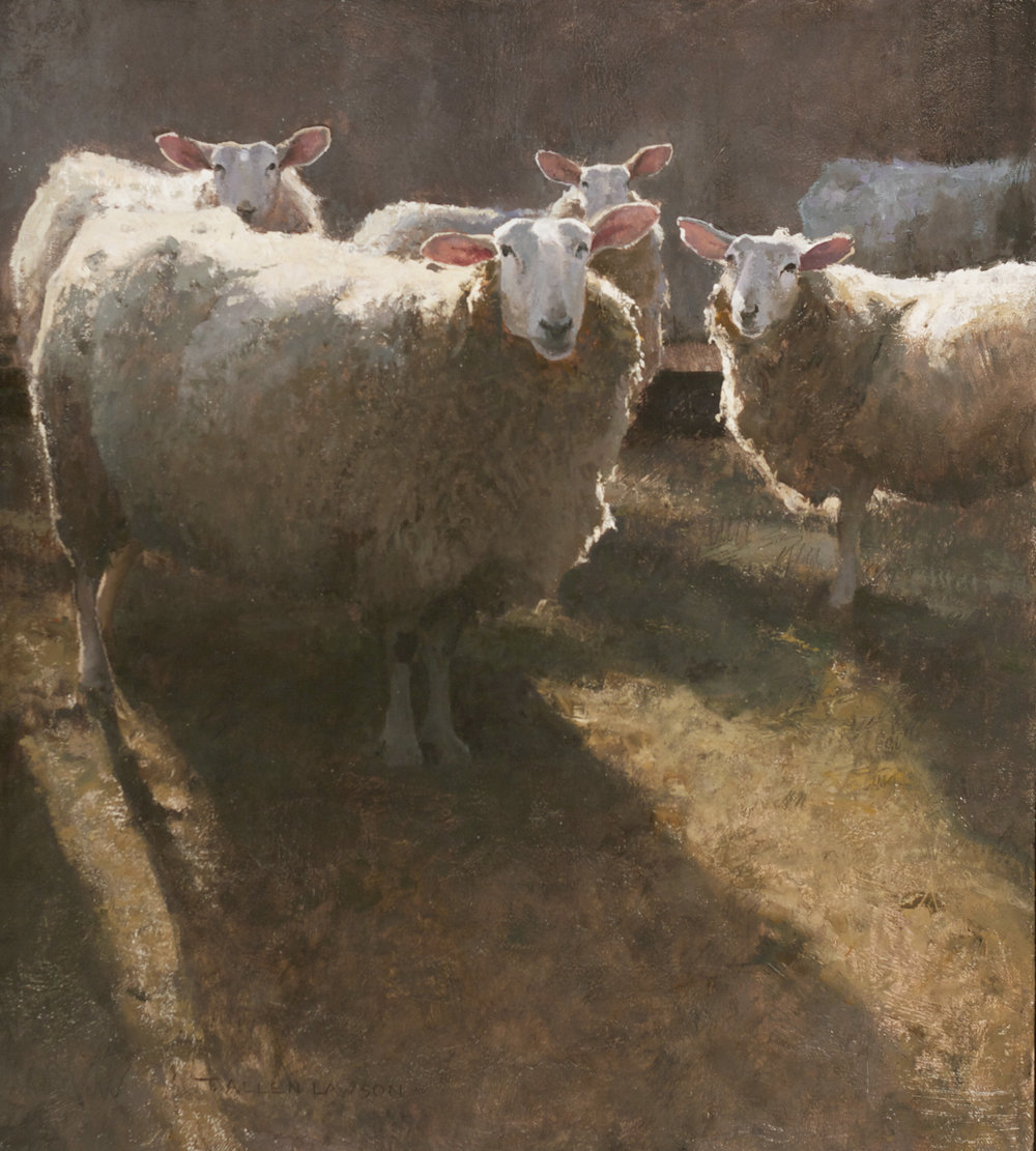 Backlit Sheep, oil on linen, 20 x 18in. Collection of Mr. and Mrs. David McCullough