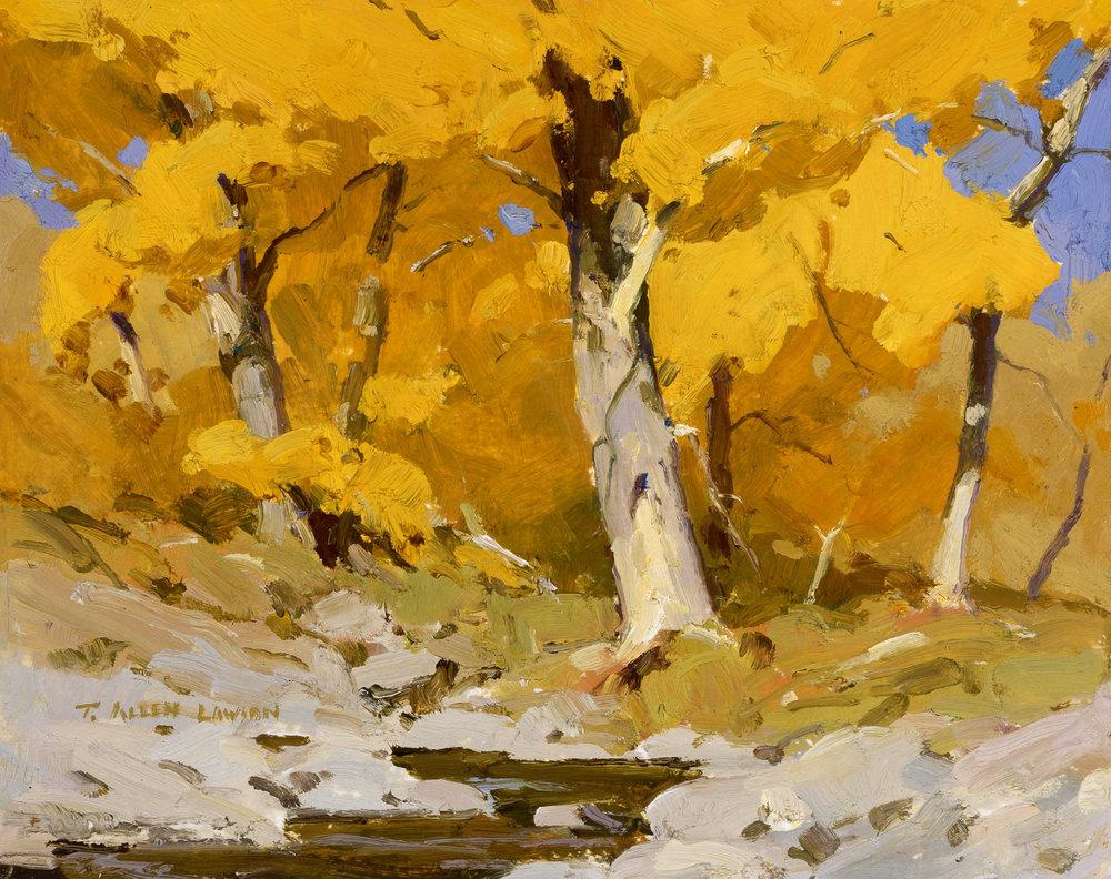 Autumn Bobcat Creek