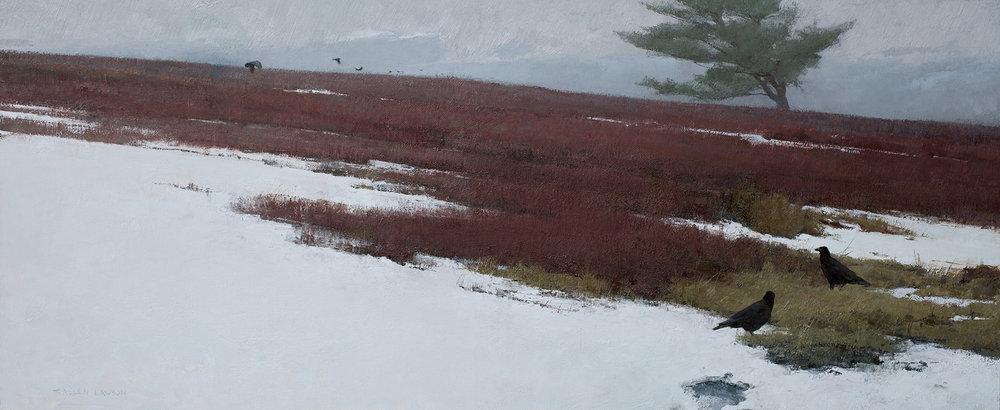 Winter Blueberries