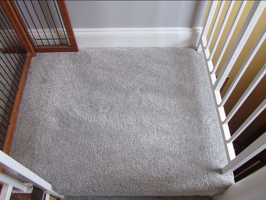 Mike-Marinari-Carpet-spiral-stairs-mailchimp-web-2-d-&-s-flooring-min.JPG