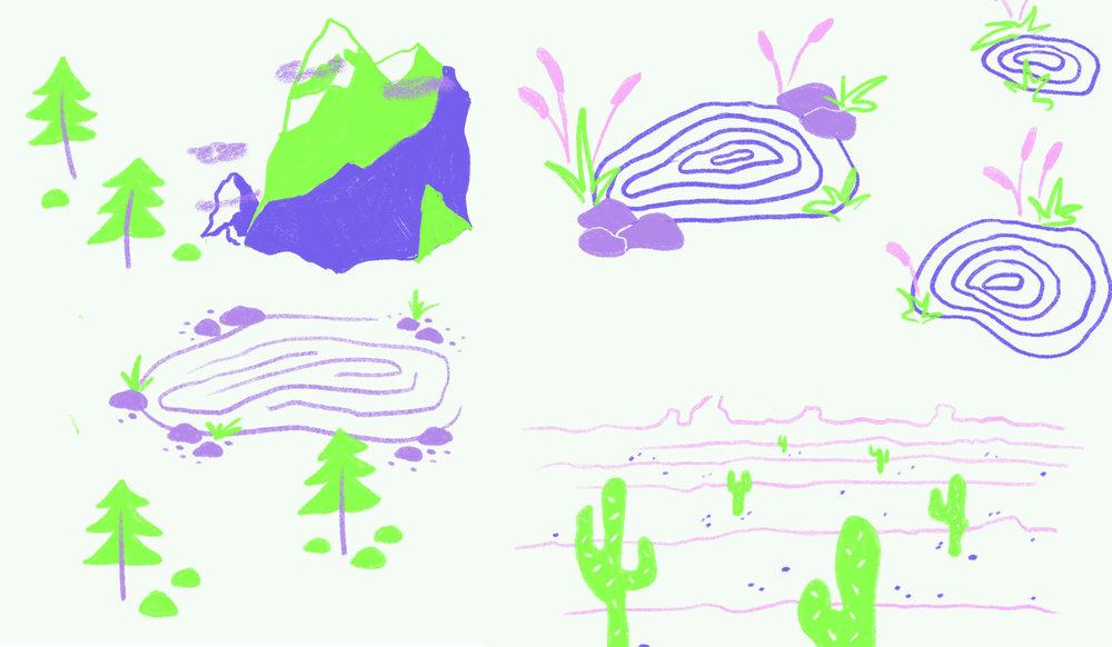 Visuals Copy.jpg