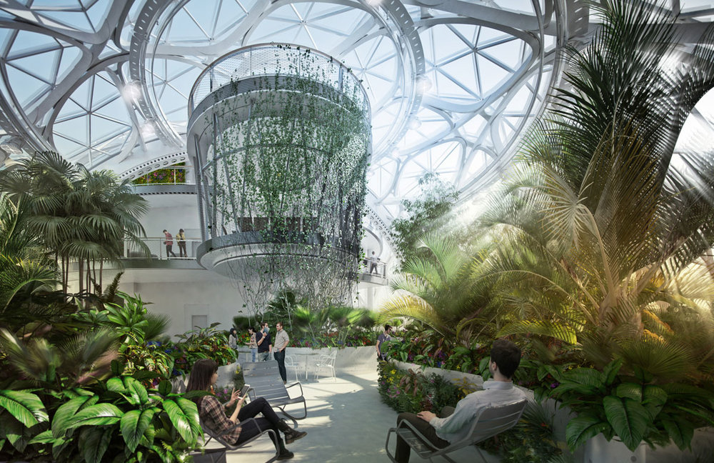nbbj-amazon-in-the-regrade-margaret-montgomery-biomimicry-biophilia-1.jpg