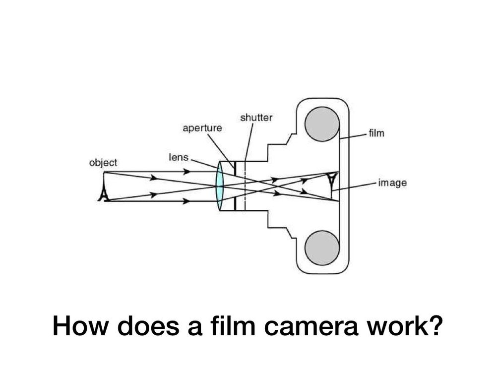 Film 101.002.jpeg