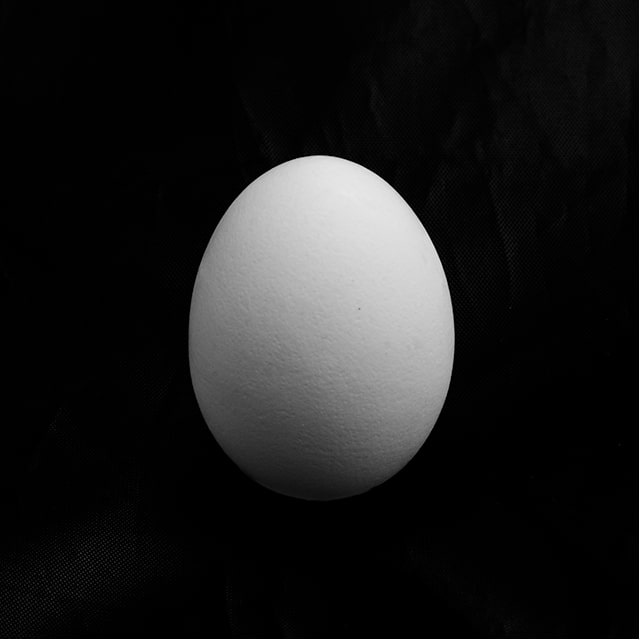 black and white photo of egg on black background