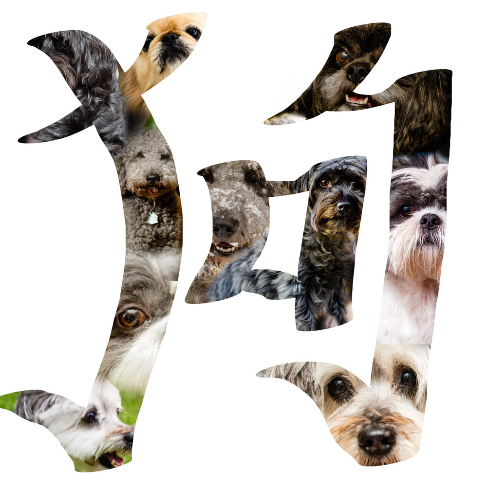 "The Chinese symbol for ""dog,"" filled with images of dogs."