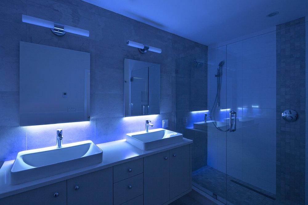 1 - Bathroom Master Dark.jpg