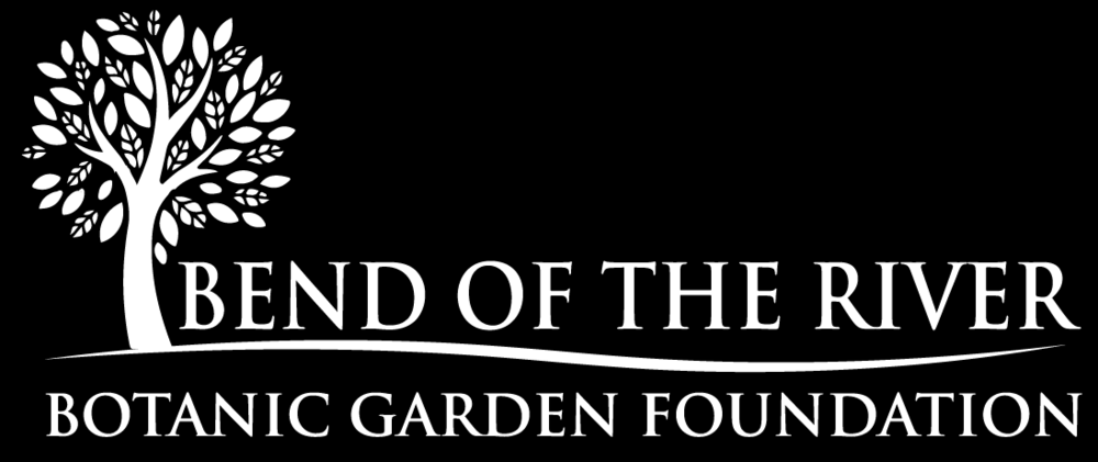 Foundation Logo_White-01.png