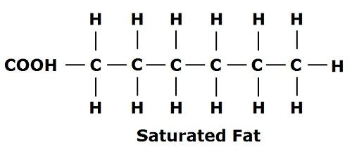 saturtaed+fat+bonds.jpg